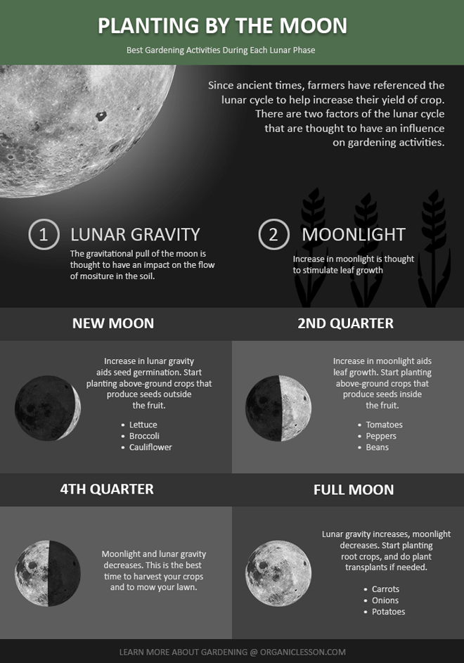 planting-by-the-moon-lunar-gardening660 s.png